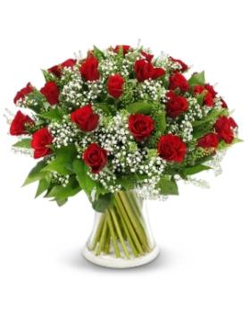 ורדים באדום ולבן