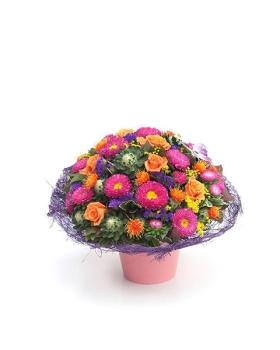 פרחים גבעתיים