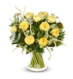 ורד אנגלי